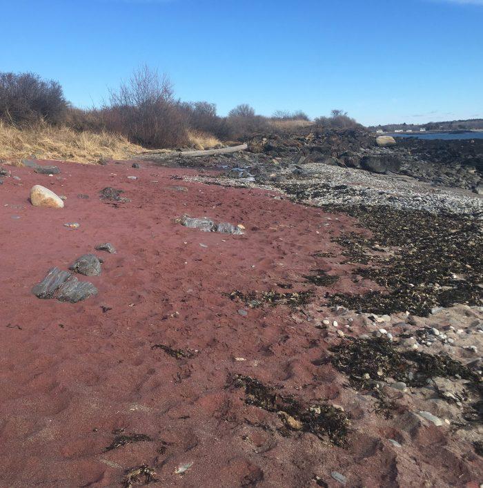 Red sands of Cape Elizabeth